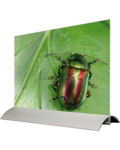 Horisontal A4 skilteholder - Perfekt til pris og produkt information / menukortholder